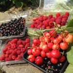 food garden 2