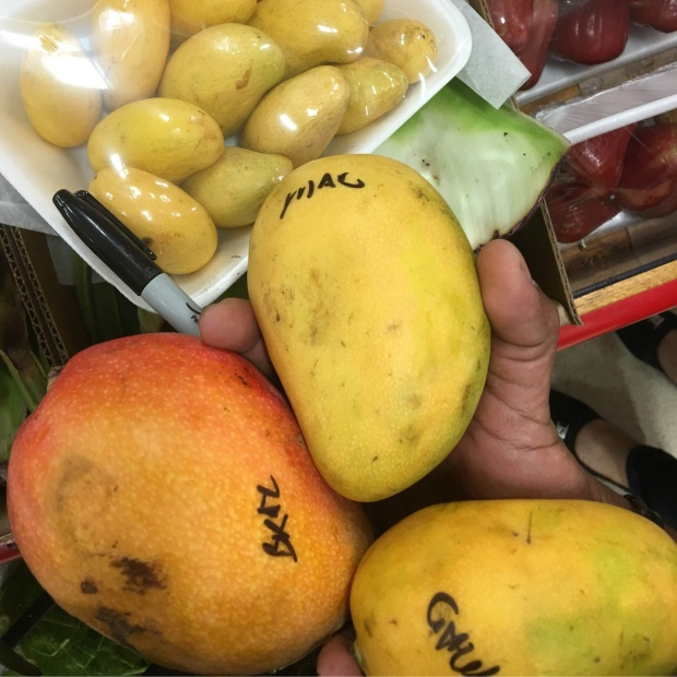All About Mangos