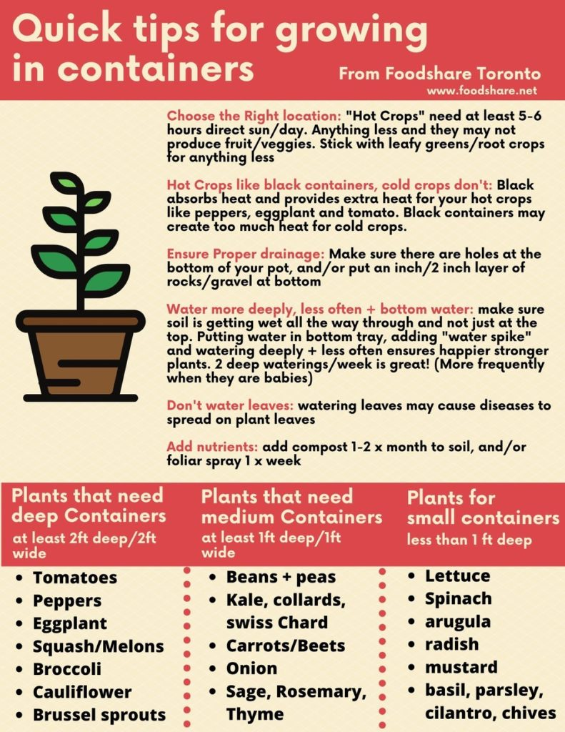 Quick tips for growing in containers. - choose the right location - sun exposure - type of containers - proper drainage - water deeply and less often - don't water leaves - add nutrients